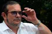 FARC lo ngại tòa án Colombia không thông qua điều khoản hòa bình