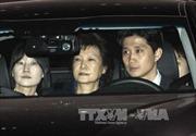 Hàn Quốc: Bắt đầu phiên xét xử cựu Tổng thống Park Geun-hye
