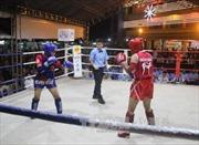 TP Hồ Chí Minh dẫn đầu Giải Muay vô địch toàn quốc năm 2017