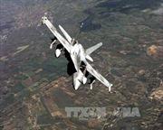 Không quân Canada tập trận lớn nhất năm 2017