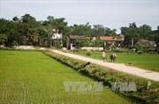 Giao dự toán bổ sung thực hiện Chương trình xây dựng nông thôn mới