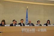 Hội đồng Nhân quyền LHQ thông qua 2 dự thảo nghị quyết do Việt Nam là đồng tác giả
