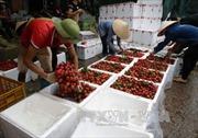 Nông sản Việt Nam rộng đường vào thị trường Australia