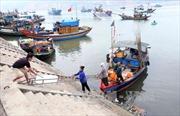 Hà Tĩnh cơ bản hoàn tất thủ tục chi trả bồi thường sự cố môi trường biển