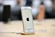 Sinh nhật lần thứ 10 ngọt ngào của iPhone