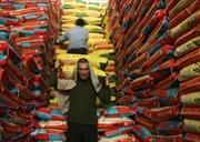 Gạo Mỹ lần đầu được thâm nhập thị trường Trung Quốc
