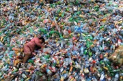 Lợi bất cập hại, Trung Quốc cấm nhập rác thải từ nước ngoài
