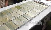 Hải Phòng bắt giữ lượng ma túy lớn nhất từ trước đến nay
