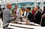 Thúc đẩy hàng 'Made in Vietnam' tiếp cận hệ thống phân phối Italy