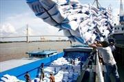 Hướng dẫn doanh nghiệp thực hiện hợp đồng xuất khẩu gạo sang Philippines