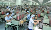 Thủ tướng đốc thúc thực hiện giải pháp phát triển kinh tế - xã hội