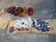 Hà Tĩnh: Phá tụ điểm đá gà ăn tiền, bắt giữ 60 đối tượng