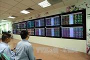 Thị trường chứng khoán còn nhiều rủi ro giảm điểm