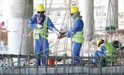 Qatar giảm tiền lương của lao động nước ngoài do khó khăn kinh tế
