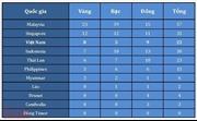 Bảng tổng sắp huy chương của đoàn thể thao Việt Nam tại SEA Games 29