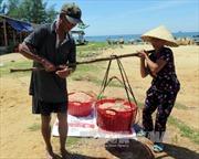 Ngư dân Hà Tĩnh trúng đậm ruốc biển