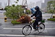 Bão Hato đổ bộ miền Nam Trung Quốc, 3 người thiệt mạng