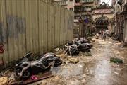 Bão Hato gây thiệt hại lớn tại Trung Quốc