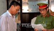 Bình Định bắt tạm giam 2 hai nghi phạm phá rừng