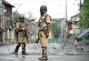 Ấn Độ: Tấn công bằng lựu đạn, 33 người thương vong