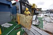 Tổng thống Mỹ ban bố tình trạng thảm họa tại Puerto Rico