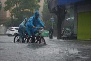 Nam Bộ, Tây Nguyên có dông, mưa to trong 3 ngày tới