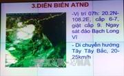 Các địa phương không được chủ quan trong ứng phó với áp thấp nhiệt đới