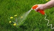 Pháp sẽ cấm sử dụng hoạt chất thuốc diệt cỏ có nguy cơ gây ung thư