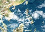 Hướng tới dự báo cực ngắn trong lĩnh vực khí tượng thủy văn