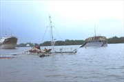 Chùm ảnh chìm tàu 3.200 tấn trên sông nhà Bè