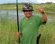 Thú câu cá rừng U Minh Thượng