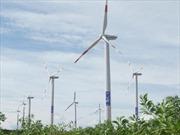 """Mỹ phán quyết """"vụ trụ điện gió"""" của VN trước 6/2012"""