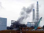 Nhật Bản còn 2 lò phản ứng hạt nhân hoạt động