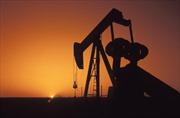 Giá dầu thế giới đột ngột giảm