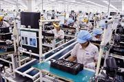 'Việt Nam là lựa chọn thay thế Trung Quốc'