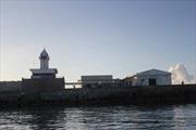 Trường Sa-Sức sống mãnh liệt giữa biển khơi