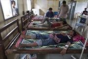 Kháng thuốc gia tăng do thuốc sốt rét giả tràn lan