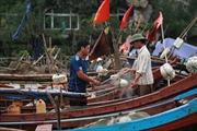 Truy tìm tàu lạ đâm chìm tàu cá ở biển Hà Tĩnh