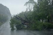 Trung Quốc sơ tán 1,5 triệu người đề phòng bão