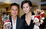 Con gái tỷ phú Hong Kong thú vị với tin '65 triệu USD kén rể'