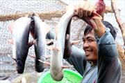 Trao đổi thương mại Việt Nam- Brazil duy trì đà tăng