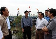 Bộ trưởng Cao Đức Phát kiểm tra công tác phòng, chống bão tại Ninh Bình