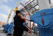 Ukraine bắt đầu nhập khí đốt từ Tây Âu
