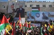 Palestine trở thành 'nhà nước quan sát viên' tại LHQ