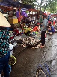 Buông lỏng kiểm soát thực phẩm tại chợ đầu mối - Bài 2