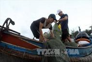 11 xã ở Thừa Thiên-Huế đã chi trả bồi thường cho ngư dân