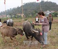 Hà Nam đẩy mạnh quảng bá, xúc tiến du lịch