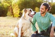 Tìm ra câu trả lời vì sao loài chó gần gũi với con người
