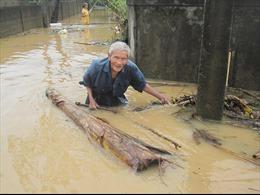 Tin lũ trên các sông Nghệ An - Quảng Bình