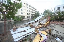 Đà Nẵng: Thị trường hoa 20/10 ế ẩm vì những lo toan sau bão